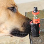 vaping around pets